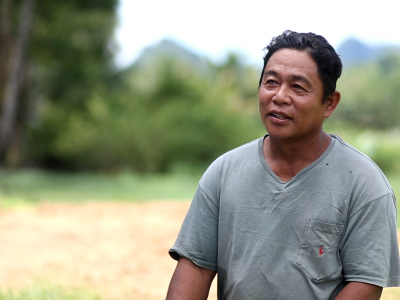 Nelson Gallana was able to increase his production by almost double with the P20,000 loan from PLEA, which he used to buy fertilizer, pesticide and other farming inputs.